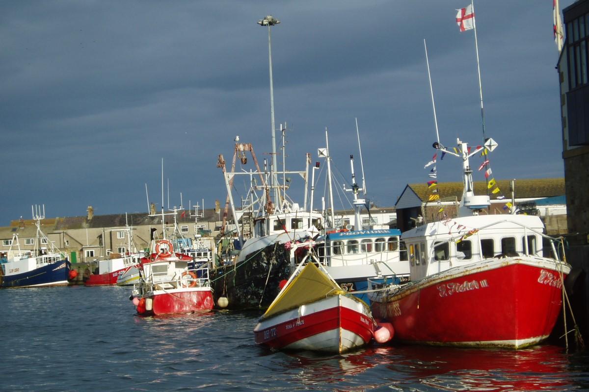 Boats near Alnwick